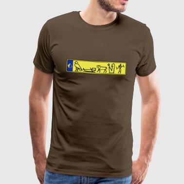 Registration Hieroglyphics - Men's Premium T-Shirt