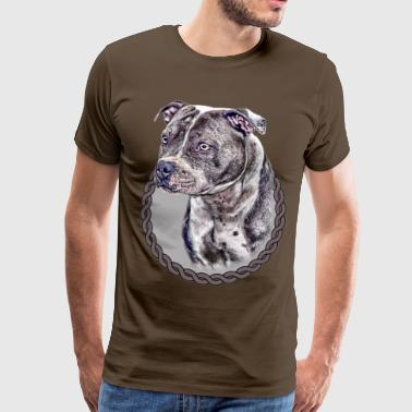 Staffordshire Bull Terrier 001 - Men's Premium T-Shirt