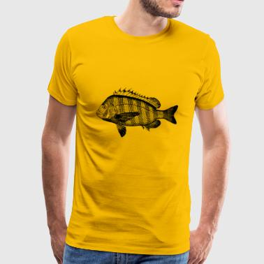 Peces animal marino perca - Camiseta premium hombre