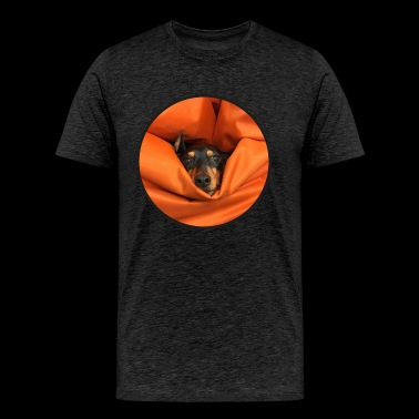 The pinscher, eaten by the seat-bag - Men's Premium T-Shirt