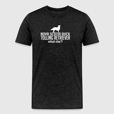 Nova Scotia Duck Tolling Retriever what else - Männer Premium T-Shirt
