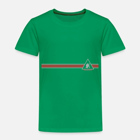 Geburtstagsgeschenk T-Shirts - Paintball - Kinder Premium T-Shirt Kelly Green