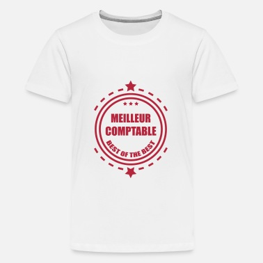 Accountant Enterprise Accountant / Accounting / Comptable / Comptabilité - Teenage Premium T-Shirt