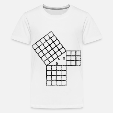 Pythagorean Pythagorean theorem - Teenage Premium T-Shirt