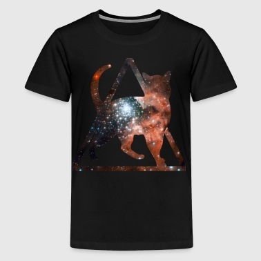 space pussy - Teenager premium T-shirt