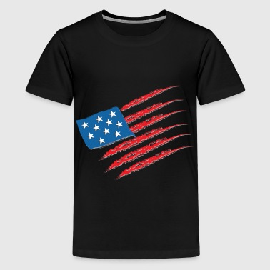 USA Amerika Flag Stars and Stripes - Teenager premium T-shirt