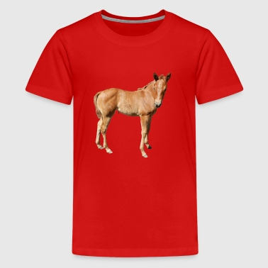 foal - Teenage Premium T-Shirt
