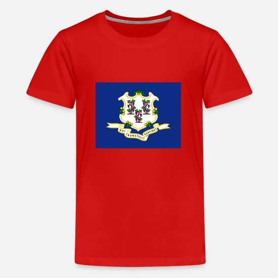 Country T-shirts - Connecticut flag - Premium T-shirt teenager rød