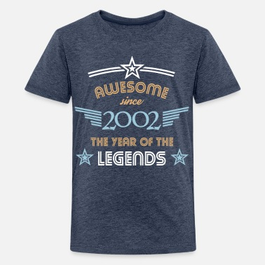 Awesome Since Awesome since 2002 - Teenager Premium T-Shirt
