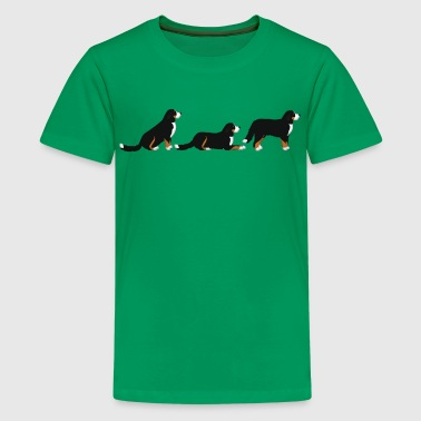 place get Bernese mountain dog - Teenage Premium T-Shirt