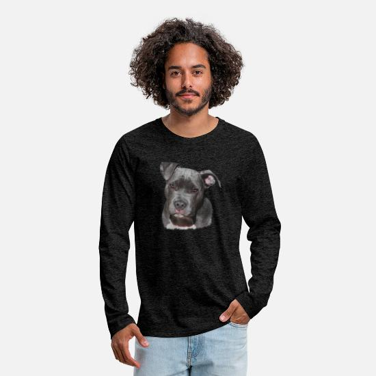 Dog Friend Long sleeve shirts - Brown American Staffordshire, dogs, dog love - Men's Premium Longsleeve Shirt charcoal grey