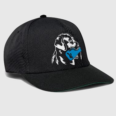 Labrador retrievers retrieve dummy - Snapback Cap