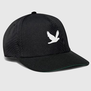 colombe - Casquette snapback