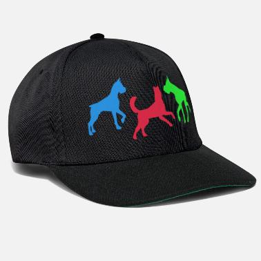 Éducation Canine canine - Casquette snapback