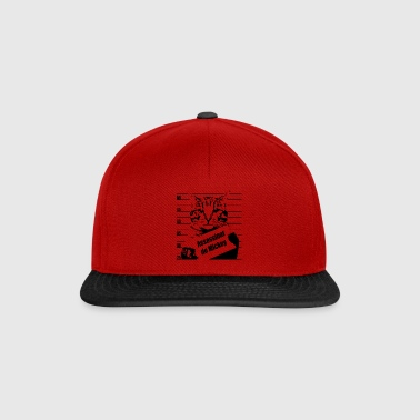 Chat wanted - Snapback Cap