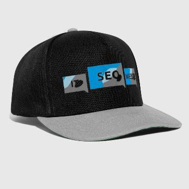 Website Seo it website - Snapback Cap 114f1391780
