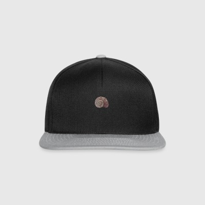 coquillage - Casquette snapback