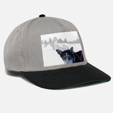 This husky is watching you - Snapback Cap