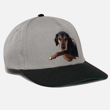 Perro lindo perro pata perro negro día - Gorra snapback 3954af981e2