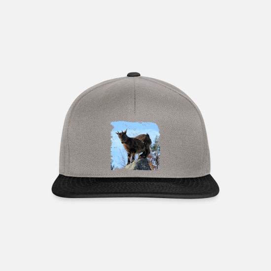 Fur Caps & Hats - The daring, the seven little kids - Snapback Cap graphite/black