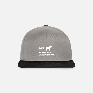 Donkey Donkey saying - Snapback Cap