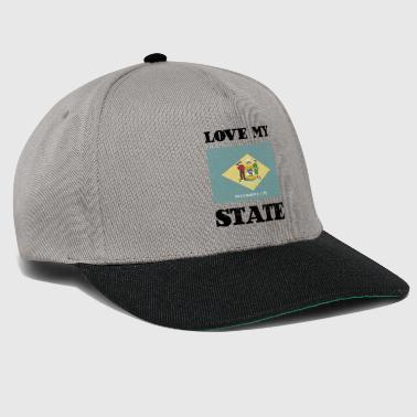 Love my state Delaware State Flag T Shirt - Snapback Cap
