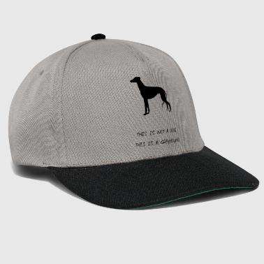 greyhound - Snapback Cap
