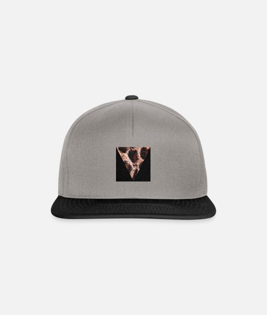 Geometry Caps & Hats - Triangle bengal fur, cat - Snapback Cap graphite/black