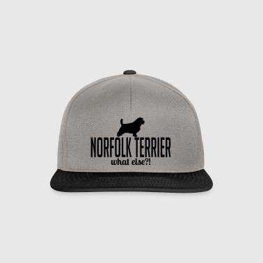 NORFOLK TERRIER what else - Snapback Cap