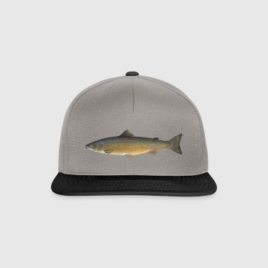 Atlantic salmon - Snapback Cap