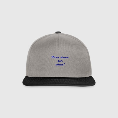 Turn down for what! - Snapback Cap
