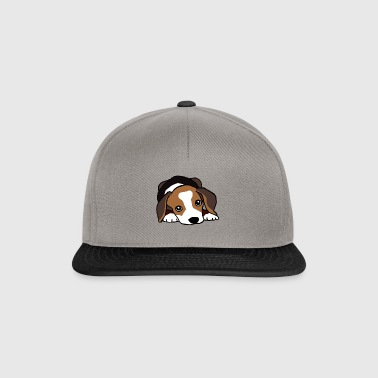 Jack Russell Terrier hund - Snapback-caps