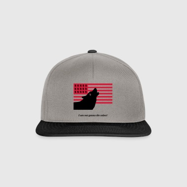 Wolf of Wall Street - citation de film - Casquette snapback