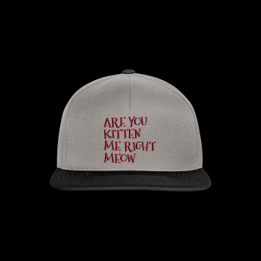 Are You Kitten Me Right Meow - Snapback Cap