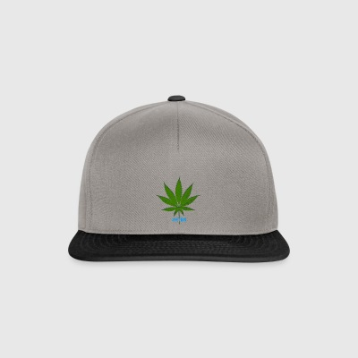 #Weed_HTBR - Casquette snapback