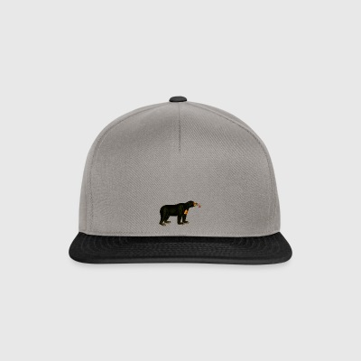 ours brun - Casquette snapback