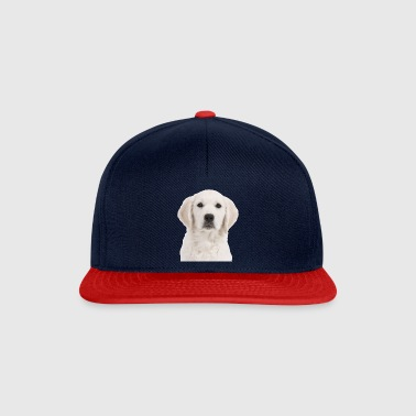 Golden Retriever - Snapbackkeps