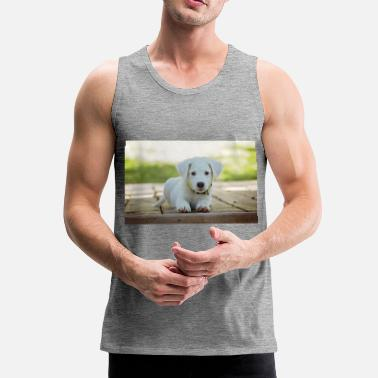 Sweetie sweety - Men's Premium Tank Top