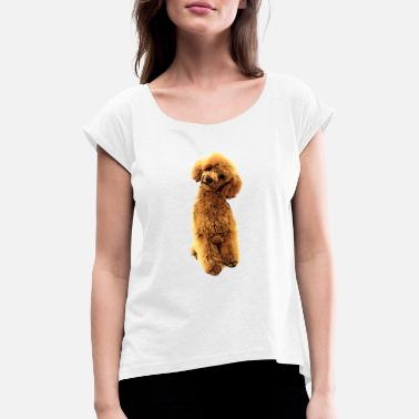 Toy Sweet poodle puppy - Women's Rolled Sleeve T-Shirt