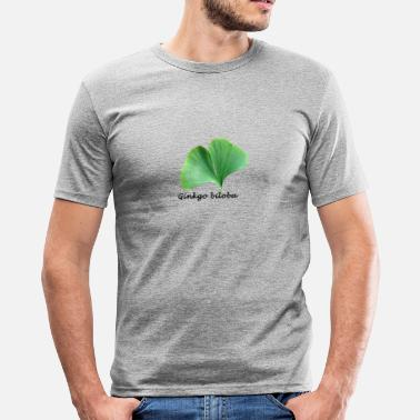 Ginkgo Ginkgo biloba - Men's Slim Fit T-Shirt