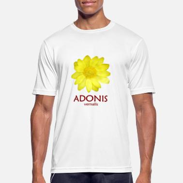 Adonis Adonis vernalis / Adonis flower / rarely beautiful - Men's Sport T-Shirt