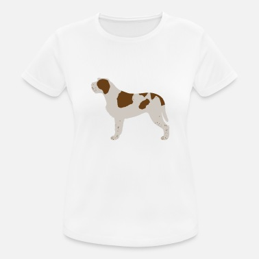 Spinone Italian Spinone (Brown and White) - Women's Breathable T-Shirt