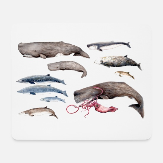 Marine Animal Mouse Pads - Sperm whales and beaked whales - Sperm whales & Beaked whales - Mouse Pad white