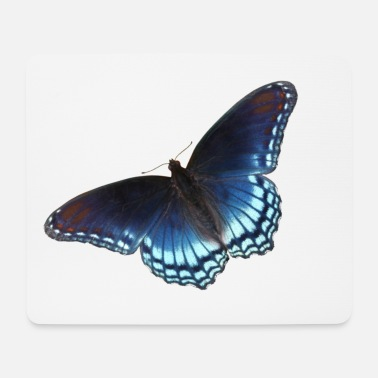Butterfly in blue with great gradient - Mouse Pad