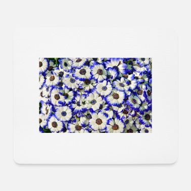 Blue White Blue white daisies - Mouse Pad
