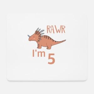 Zum 5 Geburtstag Für Jungs Mädchen Styracosaurus Trinkflasche