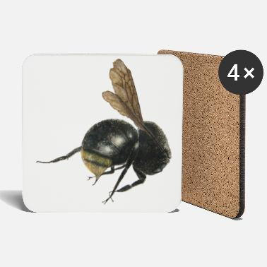 Bumble Bee bumble bee - Coasters