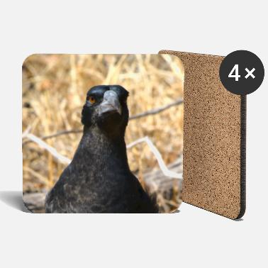 Wild A magpie staring at the camera - portrait - Coasters