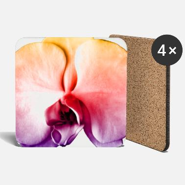 Irie White Moth Orchid Pop Art 1 - Coasters