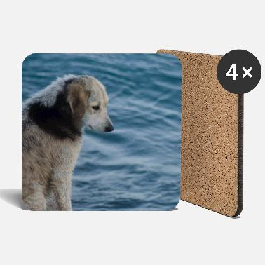 Greece Dog on the Greek shore - Coasters